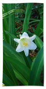 Easter Lily Beach Towel