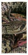 Eastern Diamondback Rattlesnake 1 Beach Towel