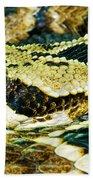 Eastern Diamondback Rattlesnake Beach Towel