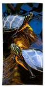 Eastern Painted Turtles Beach Towel