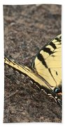 Eastern Tiger Swallowtail 8564 3241 Beach Towel