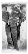 Ebony Ivory African Elephant Beach Towel