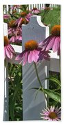 Echinacea And A White Picket Fence Beach Towel