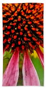 Echinacea Flower Upclose Filtered Beach Towel