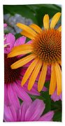 Echinacea Mango Meadowbrite Beach Towel