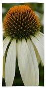 Echinacea Portrait Beach Sheet