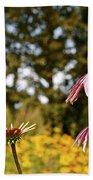Echinacea With Bee Beach Towel