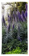 Echium And Tower Beach Towel
