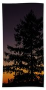 Eclipse In Yosemite Beach Towel