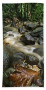 Edmond Forest Reserve On Saint Lucia Beach Towel