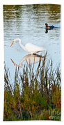 Egret And Coot In Autumn Beach Towel