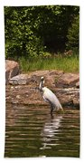 Egret In Central Park Beach Towel