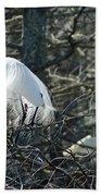 Egret In Full Display Lake Martin Louisiana Beach Towel