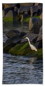 Egret On The Rocks Beach Towel