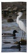 Egret Standing Guard Beach Towel