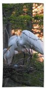 Egrets At Nest Beach Towel