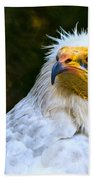 Egyptian Vulture Beach Towel