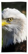 Bald Eagle Head Shot One Beach Towel