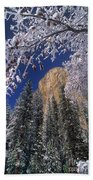 El Capitan Framed By Snow Covered Black Oaks California Beach Towel