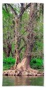Elder Tree Beach Towel
