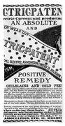 Electric Socks, 1884 Beach Towel