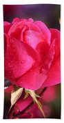 Electron Tea Rose Beach Towel