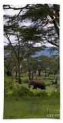 Elephant   #0068 Beach Towel