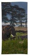 Elephant   #0134 Beach Towel