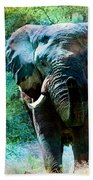Elephant - Featured In Comfortable Art- Wildlife- And Nature Wildlife Groups Beach Towel