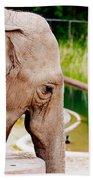 Elephant Open Mouth Beach Towel