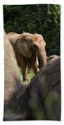 Elephant Spotted Between Rocks Beach Towel