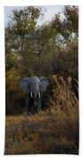 Elephant Trail Beach Towel