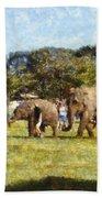 Elephant Train  Beach Towel