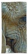 Elephant's Face Beach Towel