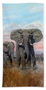 Elephants Warning To The Lions Beach Towel
