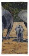Elephants With Calf Beach Towel