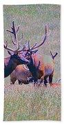 Elk On The Plains 3 Beach Towel