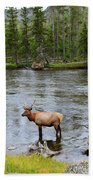 Elk Stag In The Madison River Of Yellowstone National Park Beach Towel
