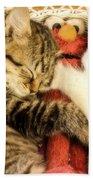 Elmos Nap Time---soft Look Beach Towel