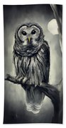 Elusive Owl Beach Towel