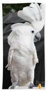 Elvis The Cockatoo II The Profile Shot Beach Towel