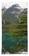 Emerald Lake Reflection And Pine Tree In Yoho National Park-british Columbia-canada Beach Towel