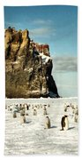 Emperor Penguin Colony Cape Washington Antarctica Beach Towel