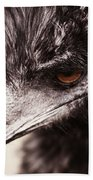 Emu Closeup Beach Towel by Karol Livote