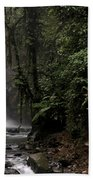 Encantada Waterfall Costa Rica Beach Towel