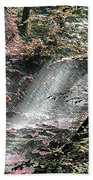 Enchanted Forest - Featured In Wildlife Group Beach Towel