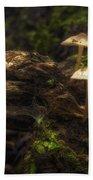 Enchanted Forest Beach Sheet