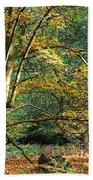 Enchanted Forest Tree Beach Towel