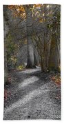 Enchanted Woods Beach Towel by Linsey Williams