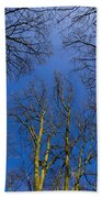 English Forest Trees Beach Towel